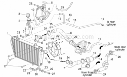 Frame - Cooling System - Aprilia - Thermostat-cooler pipe