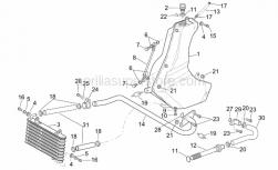 Frame - Oil Tank - Aprilia - White hose clip D17,5x8