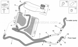 Frame - Cooling System - Aprilia - PUMP CONNECTION HOSE