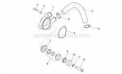 Engine - Water Pump - Aprilia - Impeller