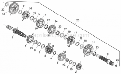 29 - Gear Box - Aprilia - 6th wheel gear Z=25
